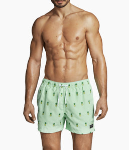 Swim Shorts Santiago - Pineapple Mint / S - SHORTS