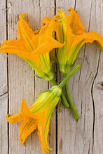 Load image into Gallery viewer, Fiori di zucca - Courgette flower 60gr.