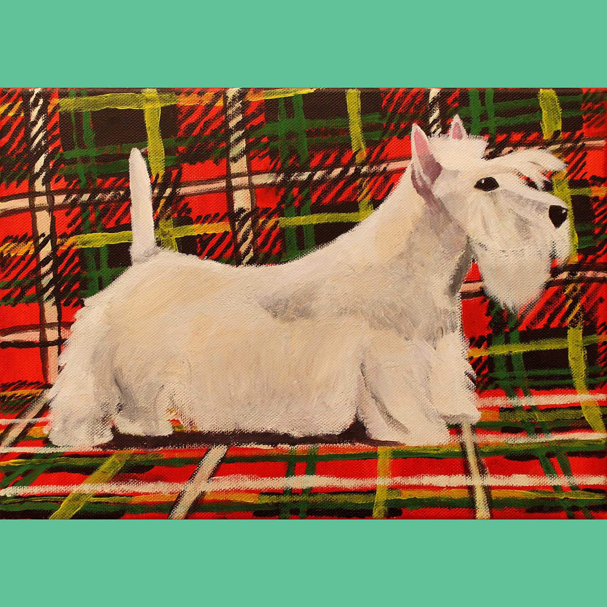 St Andrews Terrier