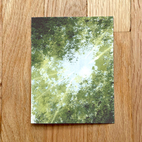 """Forest Canopy"" Blank Card Print Set"