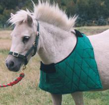 Bib Quilted Pony