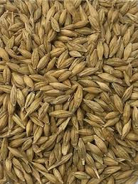 Whole Barley 25kg (WA Consolidated Grains)