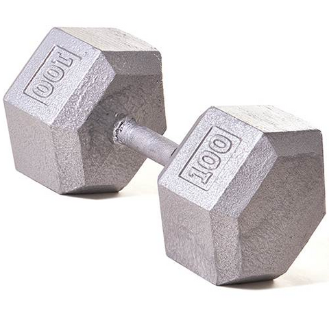 Champion Barbell 100lb Solid Hex Dumbbells - Givhony