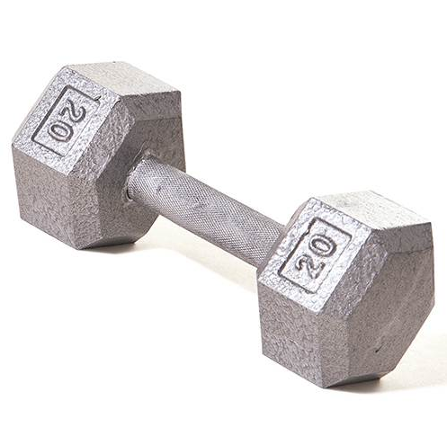 Champion Barbell 20lb Solid Hex Dumbbells - Givhony