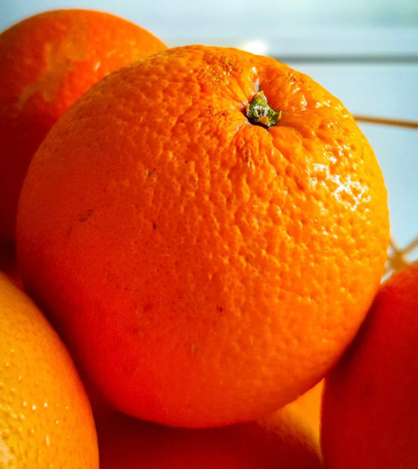 Large Orange  (each)