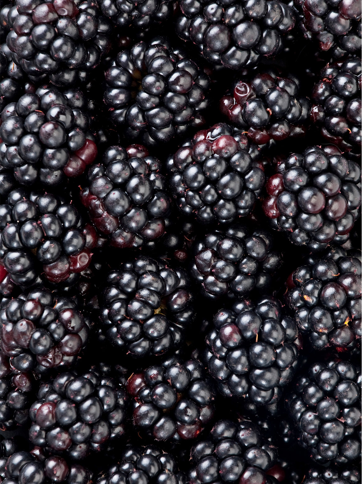 Blackberries - 1/2 pint