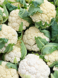 Cauliflower - Head