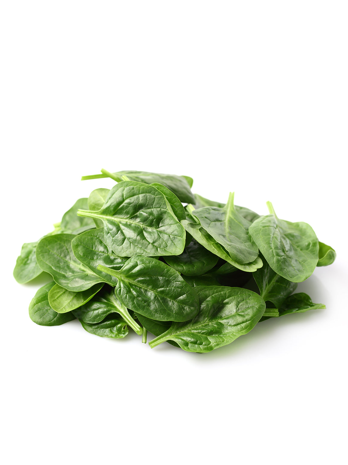 Spinach/Cello - 1 Package