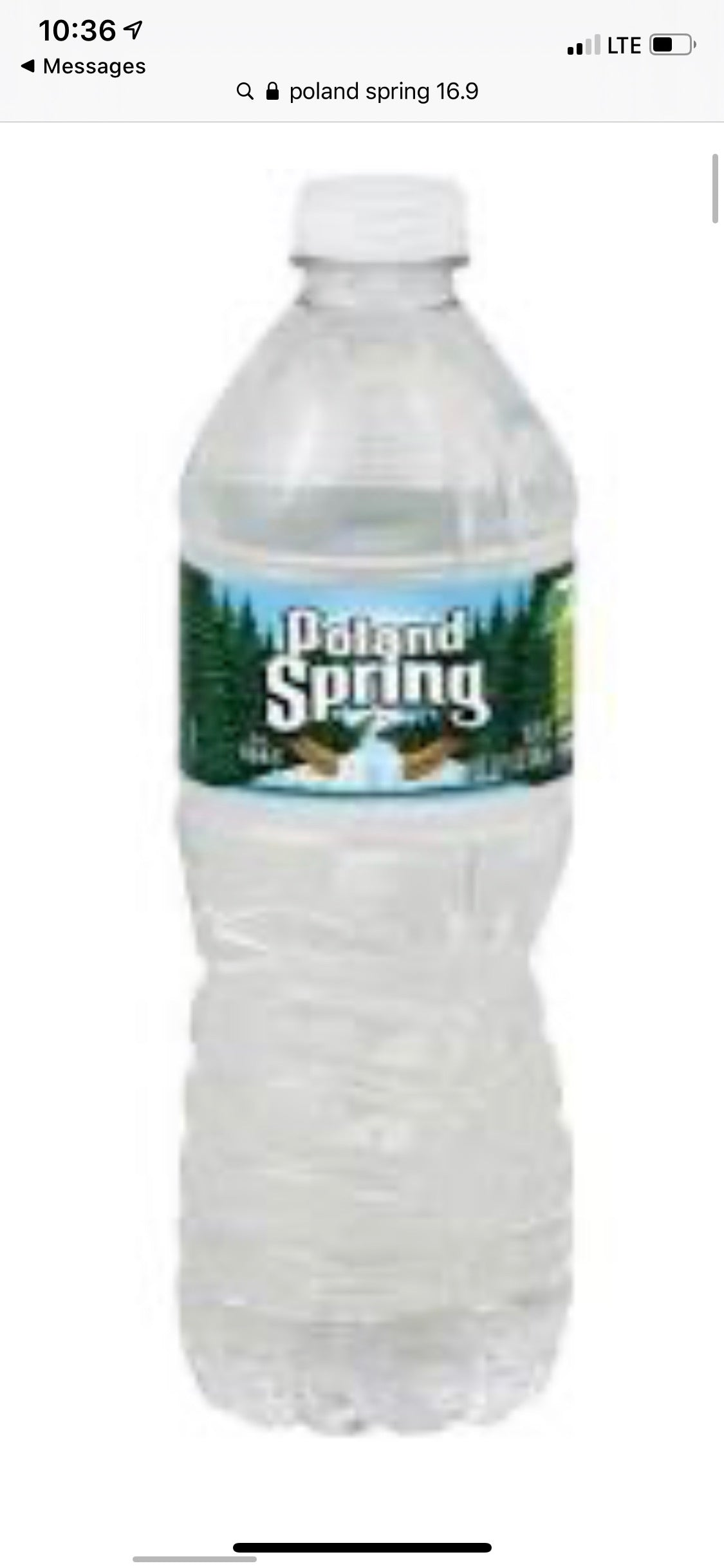 Poland spring Water - Pack of 40 x 16.9 oz