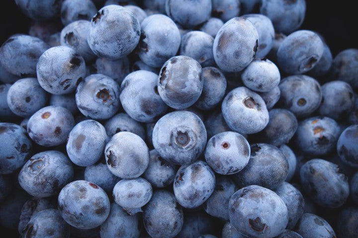 5 USD Donation - Victory Blueberries