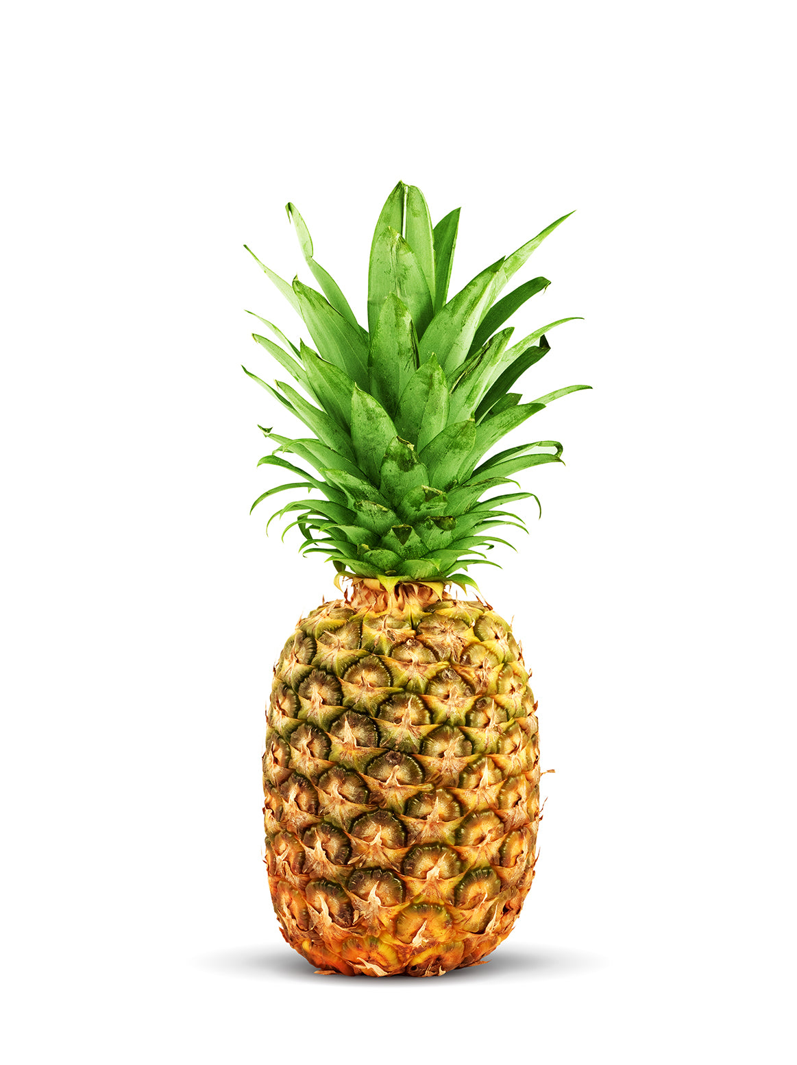 Organic Pineapples - each