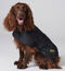 Barbour International Dog Coat
