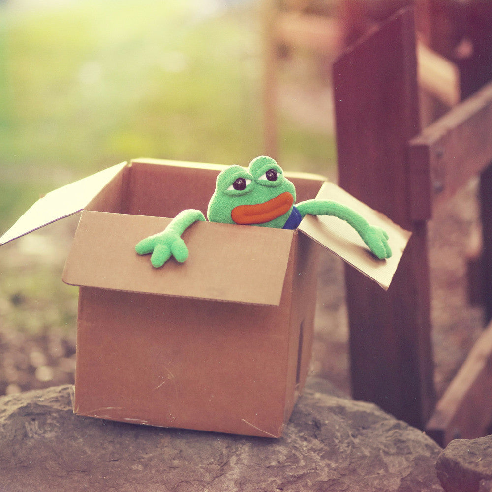 Pepe toy in a box