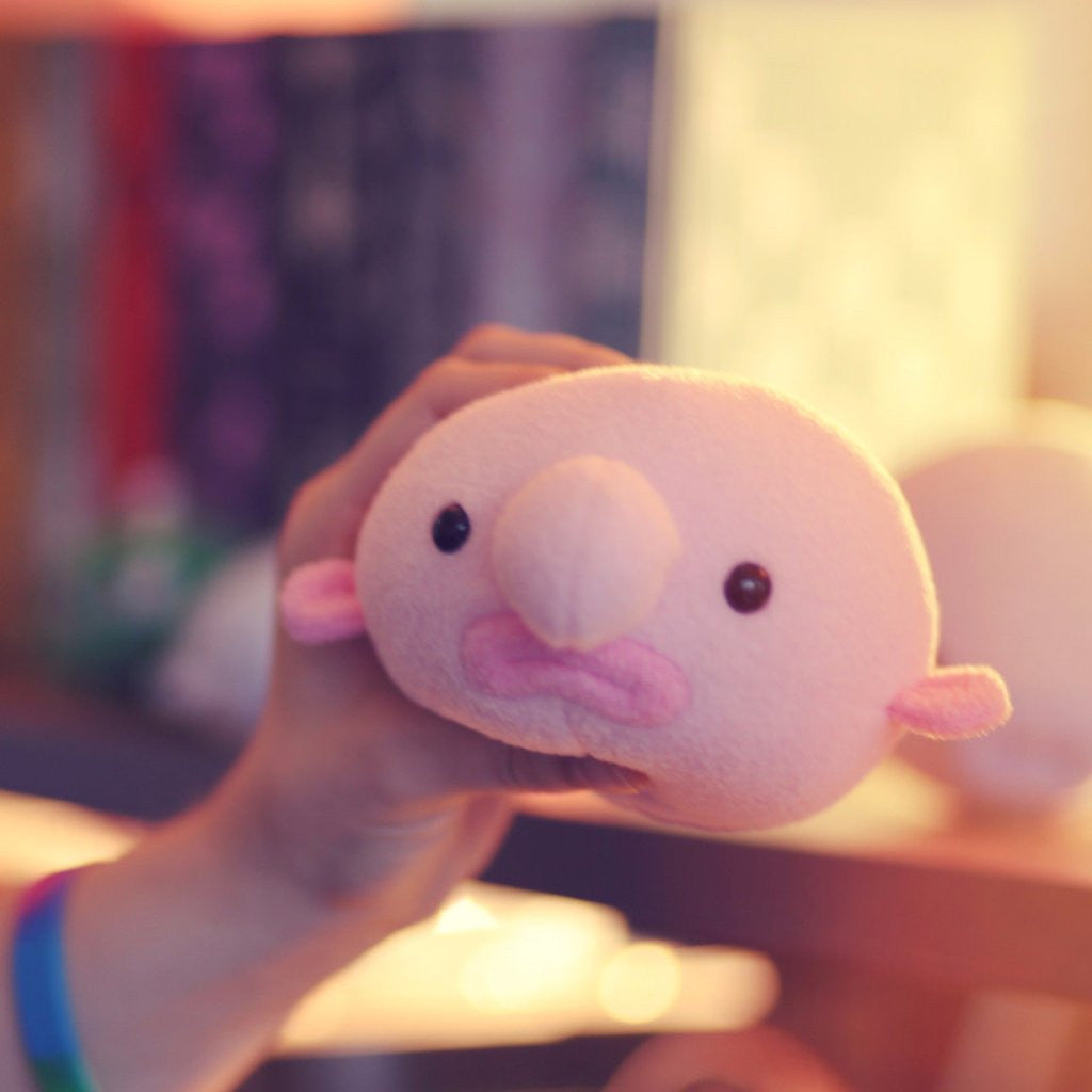 Oddballz™: Squishy Blobfish