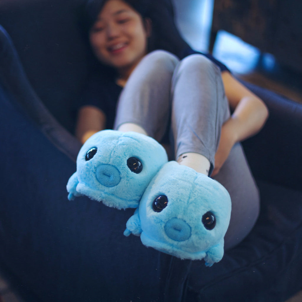 Water Bear (tardigrade) Slippers