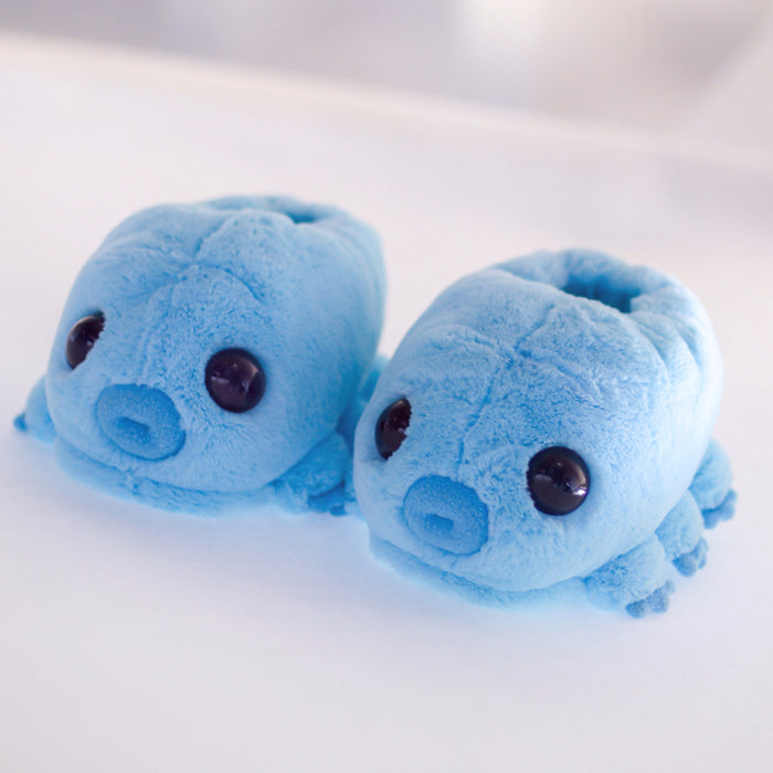 Water Bear Slippers on white backgroud