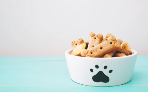 Tips on Having a Cool Bar Dog - Bring Treats | Luv the Paw