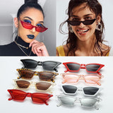 Stylish Cateye Sunglasses For Men And Women-jackmarc