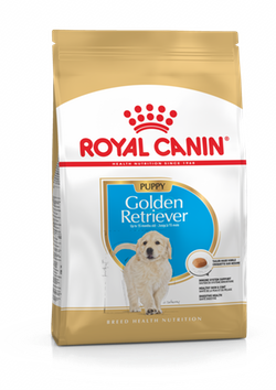 Royal Canin - Breed Health Nutrition - Golden Retriver