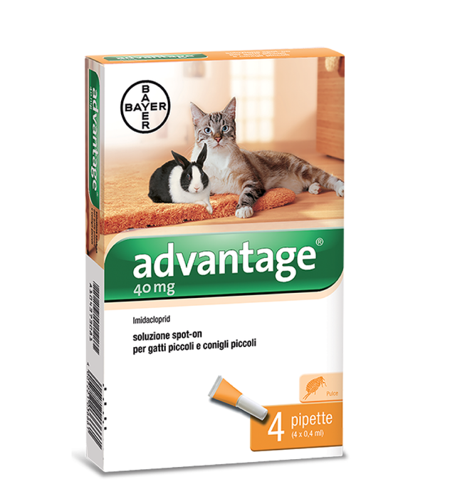 Bayer - Advantage - Gatti