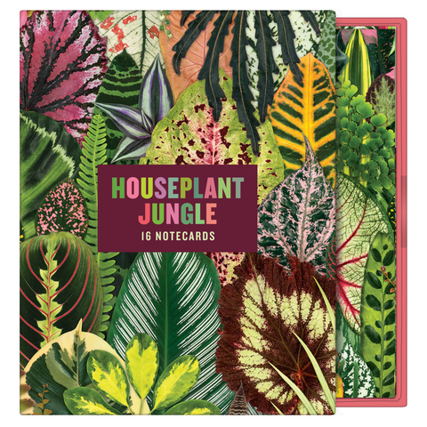 Houseplant Jungle Boxed Cards