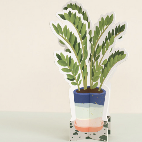 Paper houseplants
