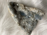 Celestite Geodes - The Black Unicorn