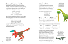 Load image into Gallery viewer, The Colorful World of Dinosaurs