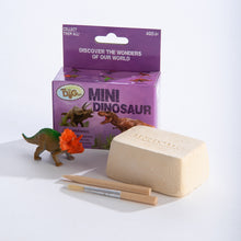 Load image into Gallery viewer, Mini Excavation Kit: Dinosaurs