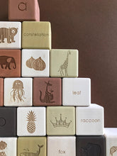 Load image into Gallery viewer, Alphabet Block Set - Olive & Brown