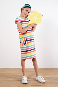 Shift Dress - Multi Stripe