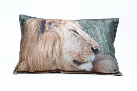 African Pillow Coverings