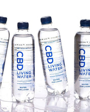 Load image into Gallery viewer, CBD ALKALINE WATER (Case of 24 Bottles)