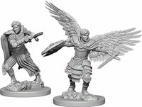 WK D&D - Aasimar M Fighter