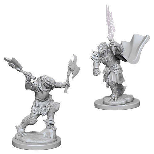 WizKids D&D - Dragonborn F Fighter