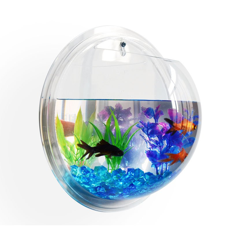 Attractive Pot Plant Wall Mounted Hanging Bowl Fish Aquarium
