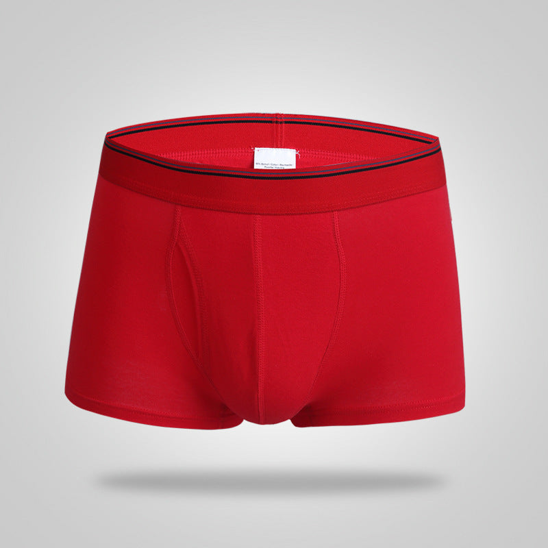 High Quality Boxers Before Opening of The Waist Trousers