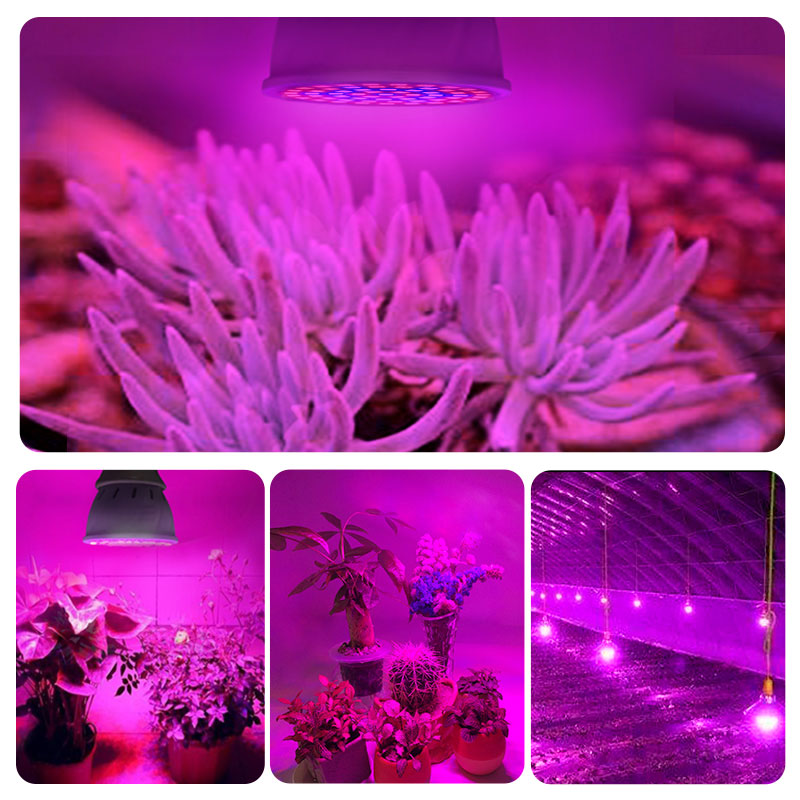 Full Spectrum LED Plant Grow 220V E27 Light Bulb