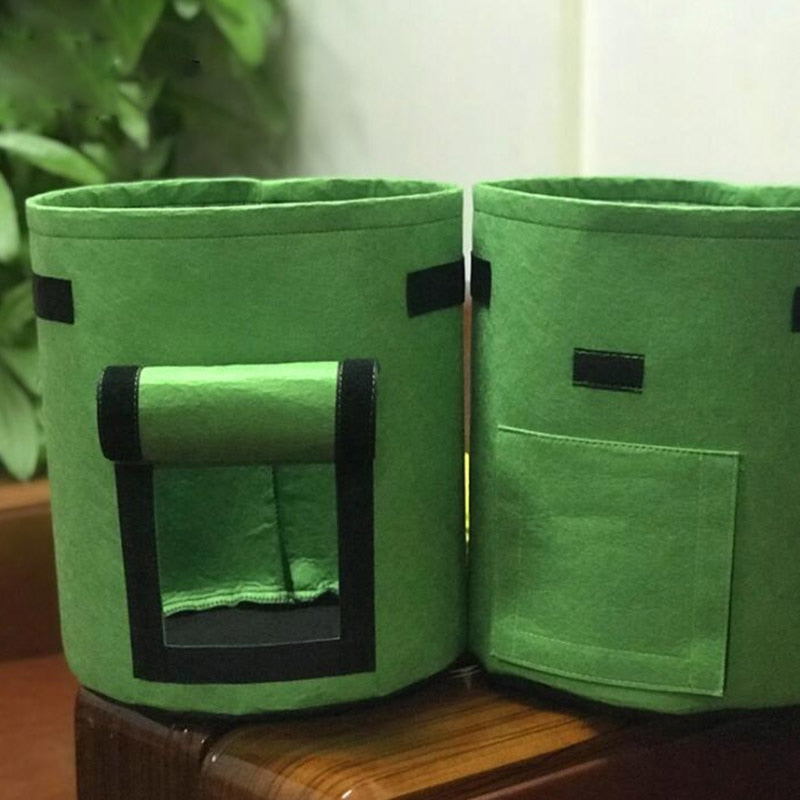 Green Potato Pot & Plant Grow Bags