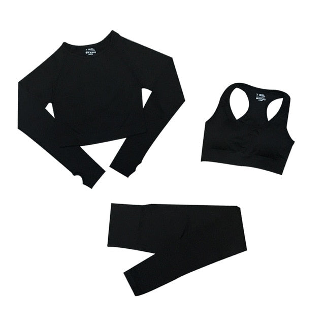 Seamless Long Sleeve Crop Top & High Waist Leggings: Women's Sports Suits
