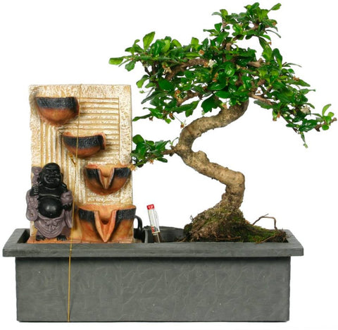 Waterval Buddha LED met 4 kommen-bonsai-indofood2go