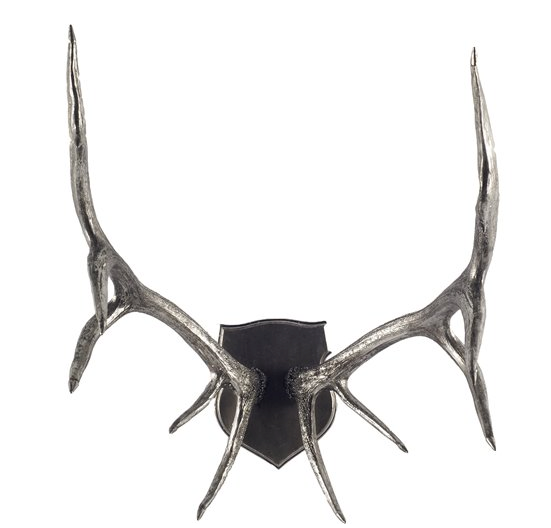 Silver Mounted Antlers