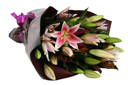 Oriental lily (bunch)