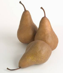 Pears brown or Bosc(Each)