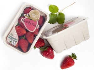 Strawberry compostable punnet