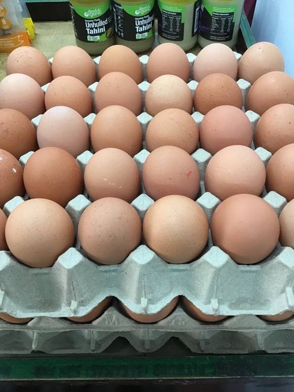 Eggs free range local yarra valley 800g(dozen)