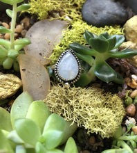 Load image into Gallery viewer, Rainbow Moonstone Ring sz 5.25