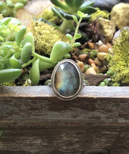 Load image into Gallery viewer, Labradorite Ring sz 8