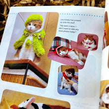 Load image into Gallery viewer, Japanese Cat Fashion Book, Crazy Cat Gift Cat Clothes, Eco Cat Toys, Marvelous Melissa, Three Blind Mice, Combo, Ready to Ship