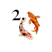 Load image into Gallery viewer, Animal countdown
